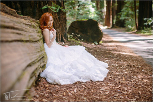 Wedding Photographers in Sacramento and the Redwoods